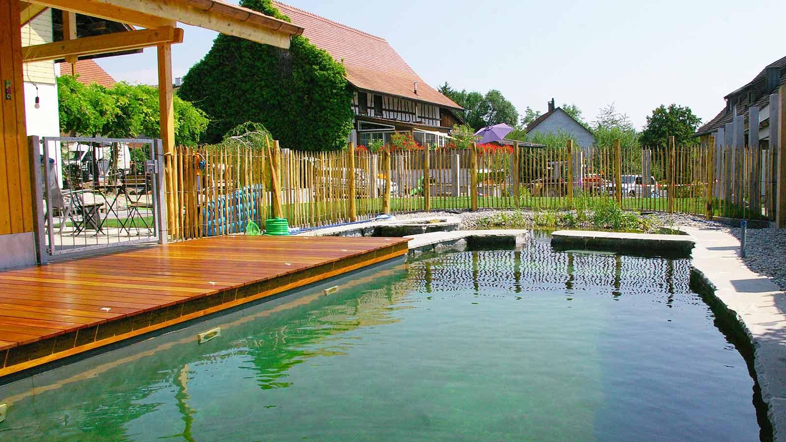 meier-gartenbau-naturapool-galerie-pool-haus-holz | meier gartenbau ag